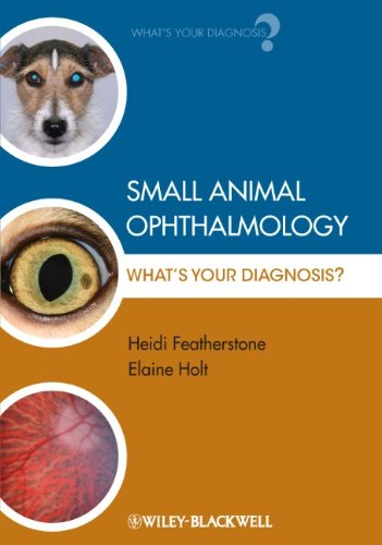 Small Animal Ophthalmology: Whats Your Diagnosis
