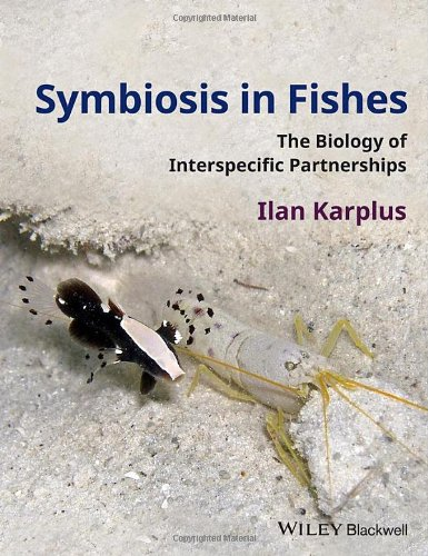 Symbiosis In Fishes